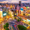The town of desire - Shibuya -